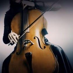 Violons & Violoncelles